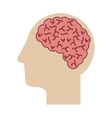 profile head with human brain vector image