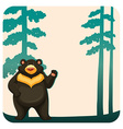 Grizzly bear vector image vector image