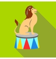 Lion circus sitting icon flat style vector image