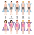different body shape types vector image
