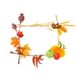 Autumn harvest frame for vector image vector image
