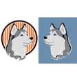 Husky dog vector image