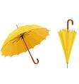 Yellow umbrellas vector image