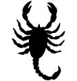 scorpion silhouette vector image