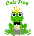 fairy frog prince vector image