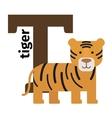 English animals zoo alphabet letter T vector image