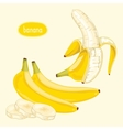 Peeled banana on light background vector image