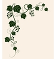 Beautiful grape vine green silhouette on beige vector image vector image