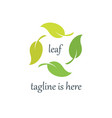 4 leaf logo template design vector image