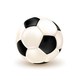 Isolated Football Ball vector image