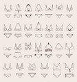 Set with various women swimsuits hand vector image
