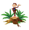 A stump with an adult monkey vector image vector image