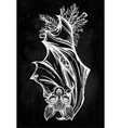 Ornate of a bat in vintage style vector image