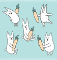 set of rabbits with carrots vector image