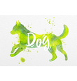 Painted animals dog vector image
