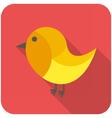 Robin icon vector image