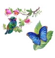 Watercolor colorful Bird and butterfly with leaves vector image