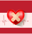 heart with plaster on cardiogram vector image vector image