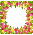 circle frame with tulips red and yellow flowers vector image