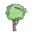 tree plant nature ecology vector image
