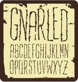 Grunge scratch type font vintage typography vector image