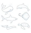 The outlines of sea creatures vector image