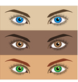image of three variations of woman eyes vector image