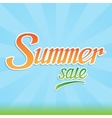 Summer sale inscription with handwritten letters vector image