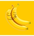 Funny sleeping bananas vector image