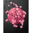 Blossoming Cherry Tree vector image