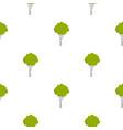 birch pattern flat vector image