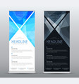 design a standard roll up banner for presentations vector image