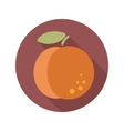Peach flat icon with long shadow vector image