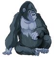 Sitting Gorilla vector image