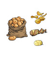 sketch raw potato bag chips peel set vector image