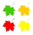 Set maple leaf vector image