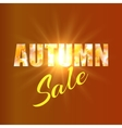Autumn sale background with yellow maple leaves vector image