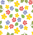 Seamless pattern floral daisy vector image