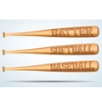 Set of Wooden Baseball bat vector image