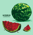 digital detailed color watermelon hand vector image