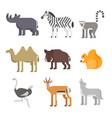 flat style set of animals rhinoceros wolf lemur vector image