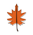 maple fall leaf icon image vector image