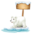 A white polar bear below the wooden signboard vector image vector image