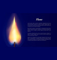 flame from candle with text vector image