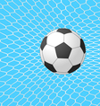 soccer ball in goal vector image