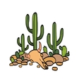 cactus cow scull and stones vector image