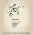 vintage olive branch background vector image