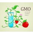 GMO genetically vector image
