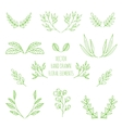 hand drawn floral elements vector image