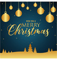 wish you a merry christmas gold blue background ve vector image